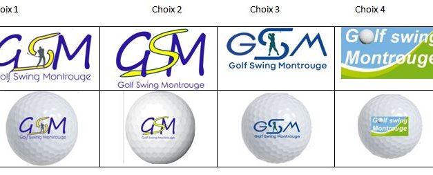 Sondage choix nouveau logo GSM